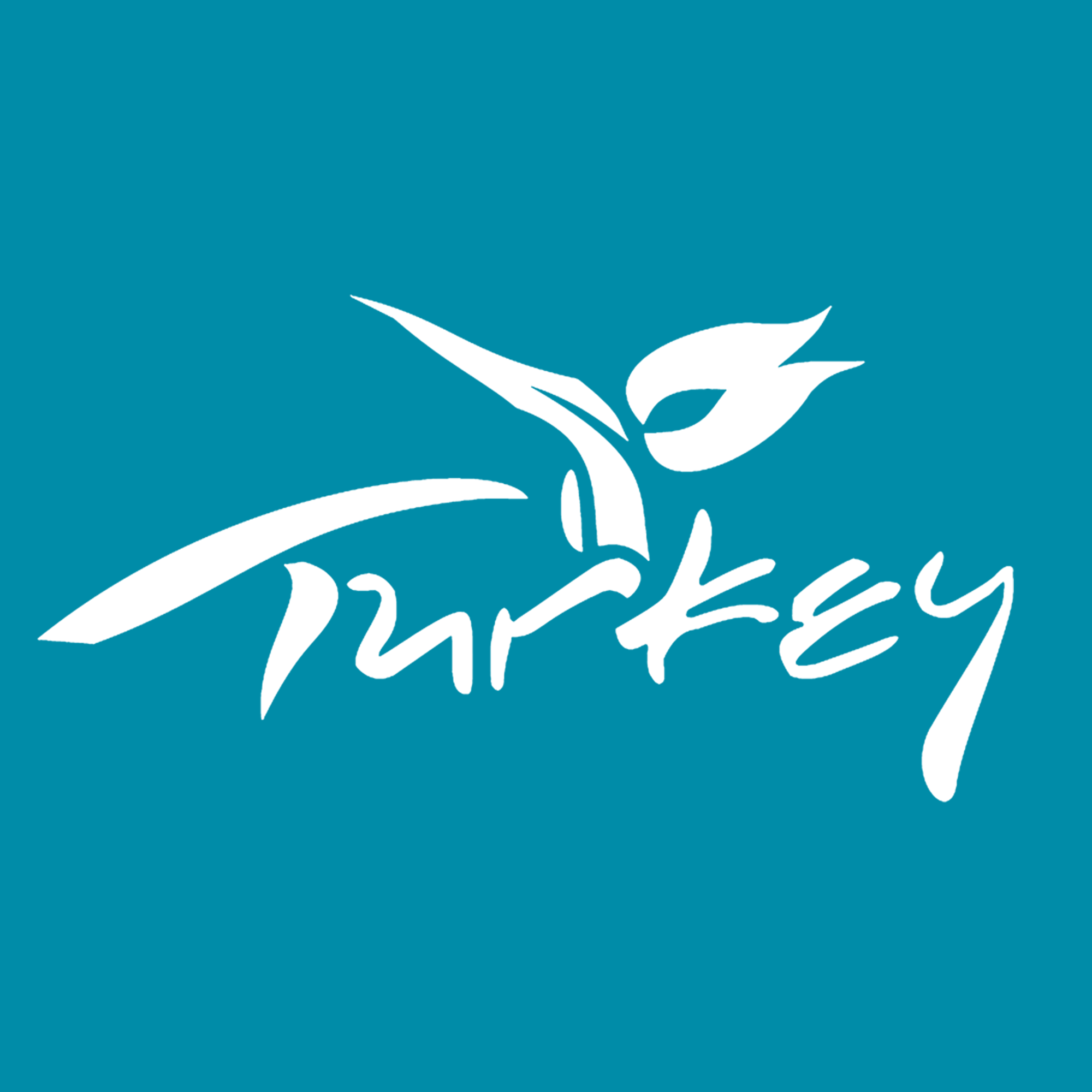 Home - Visit Turkey - Official travel guide to Turkey - Tourism in Turkey